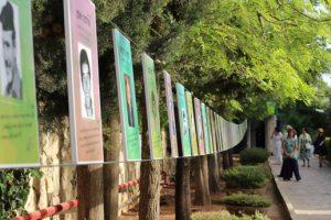 מלגת הנצחה: שרשרת תמונות הנצחה תלויה בין עצים